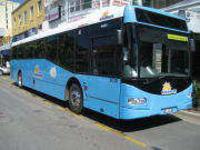 ケアンズの公共交通機関 サンバス