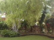 kaesehagen_frontyard